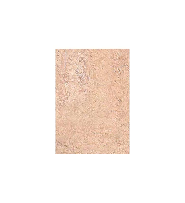 TARJA PLASTICA C/PATAS PLATEADAS No. 14K